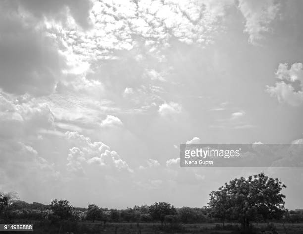 cloud typologies - neha gupta stock pictures, royalty-free photos & images