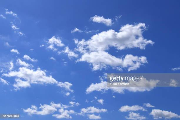 cloud typologies - white clouds in the blue sky - 雲 ストックフォトと画像