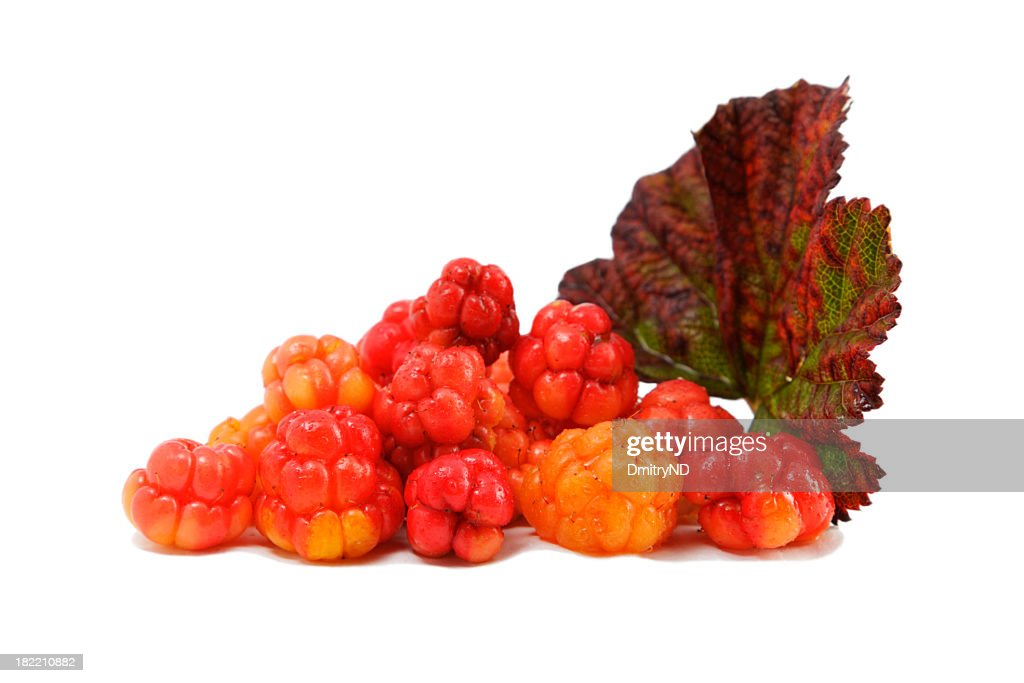 Cloudberry. : Stock Photo