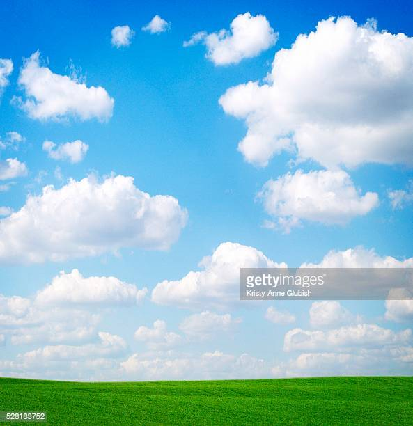 Clouds Above a Green Field