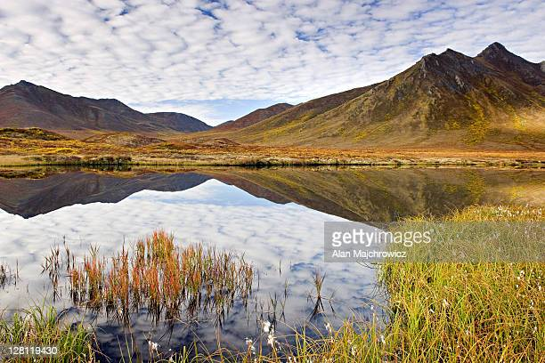 clouds and mountains reflected in small tundra lake of the ogilvie mountains, tombstone territorial park, yukon, canada - territory stock pictures, royalty-free photos & images