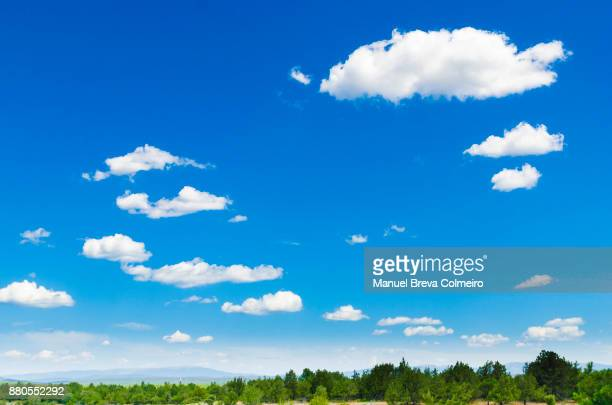 clouds and sky - céu claro imagens e fotografias de stock