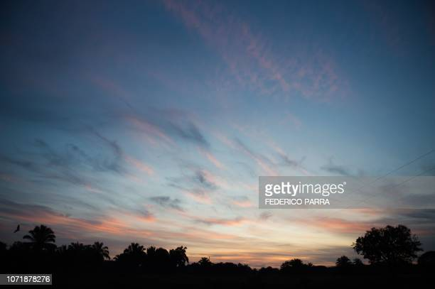 Clouds are illuminated by pre-dawn light at a dairy farm in San Silvestre, Barinas State, Venezuela, on November 28, 2018. - Robberies, squattings,...