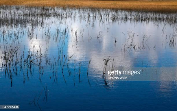 Clouds are reflected in the Florida Everglades otherwise known as the river of grass on Miccosukee Tribal land adjacent to Florida Everglades...