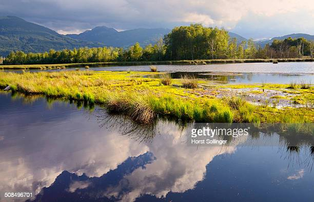 Clouds being reflected in a bog pond, a drying up flooded former peat mine, Nickelheim, Koller Filze, prealpine lands, Bavaria, Germany, Europe