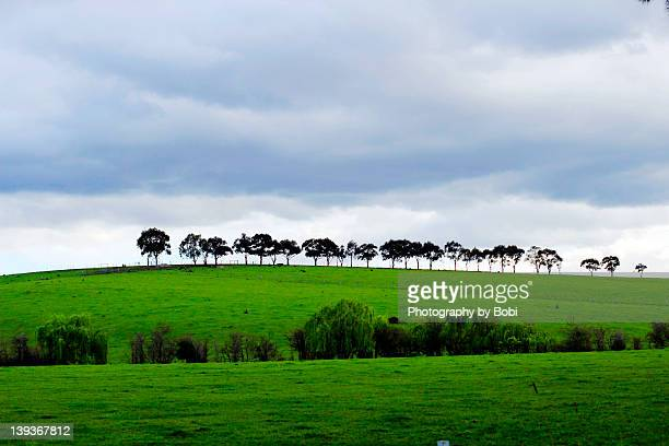 Clouds covered Melbourne suburb of pasture