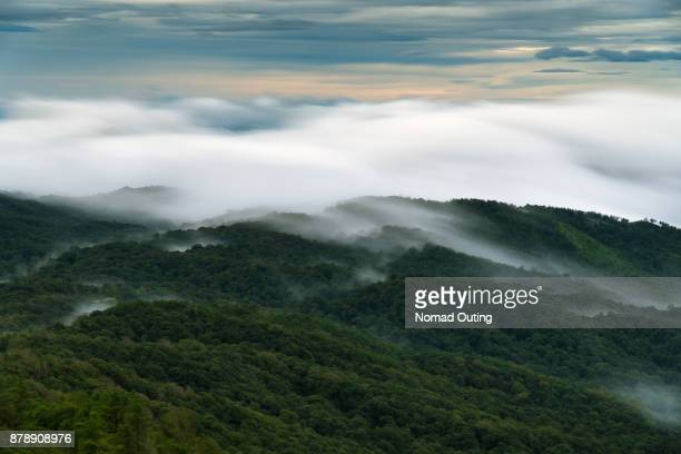 clouds moving over forest,hazy sky over mountain,low shutter speed effect.