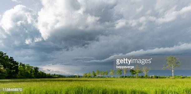 clouds ove rice firlds - ビエラ ストックフォトと画像