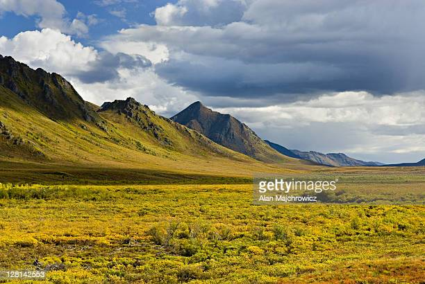 clouds over the ogilvie mountains, tombstone territorial park, yuko,n canada - territory stock pictures, royalty-free photos & images