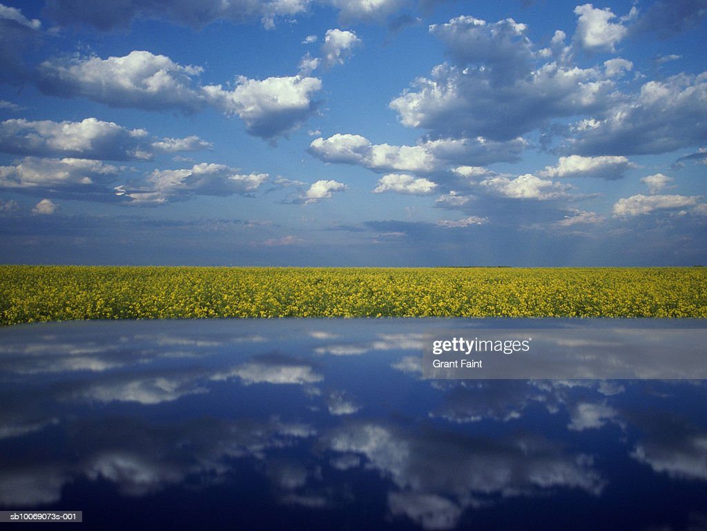 Clouds reflecting on car roof in countryside : Stockfoto