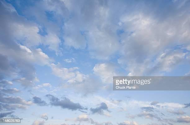 Cloudsin an evening sky