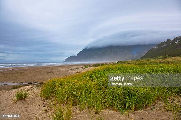 a cloudy day at manzanita beach - manzanita stock pictures, royalty-free photos & images