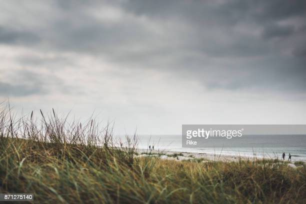 journée nuageuse à la plage de sable de la mer baltique / darss - fischland darss zingst photos et images de collection