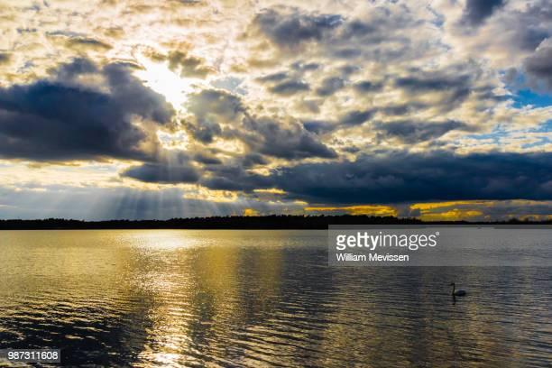 cloudy golden lake - william mevissen bildbanksfoton och bilder