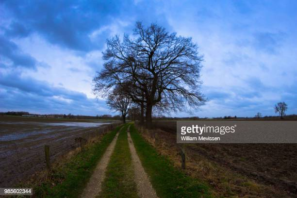 cloudy path - william mevissen fotografías e imágenes de stock