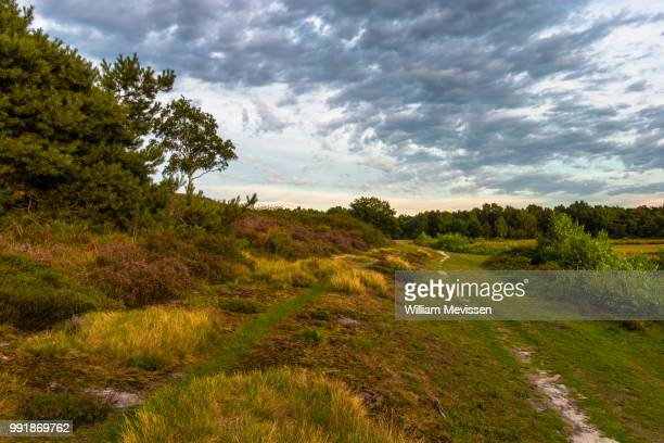 cloudy path - william mevissen stock-fotos und bilder