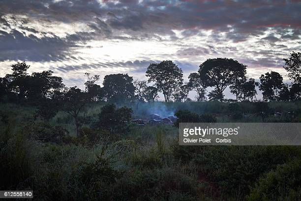 Cloudy skies and forest surround a diamond miners' settlement outside an Angolan village near the Congolese border 28 March 2013 The name of the...