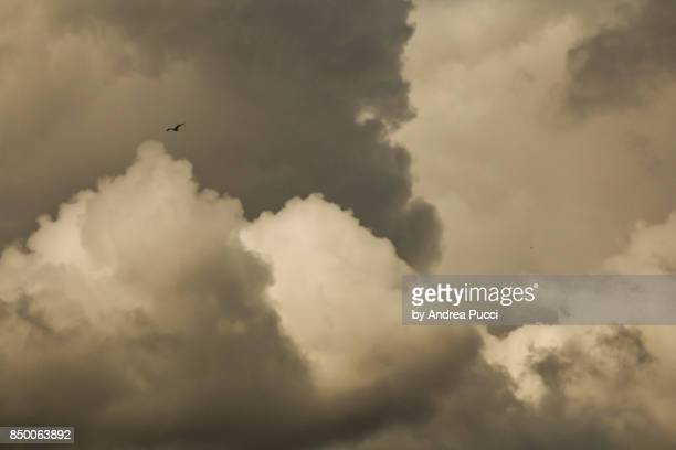cloudy sky, dublin, republic of ireland - dublin republic of ireland stock pictures, royalty-free photos & images