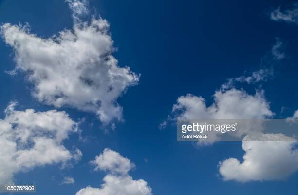 cloudy sky - wispy stock photos and pictures
