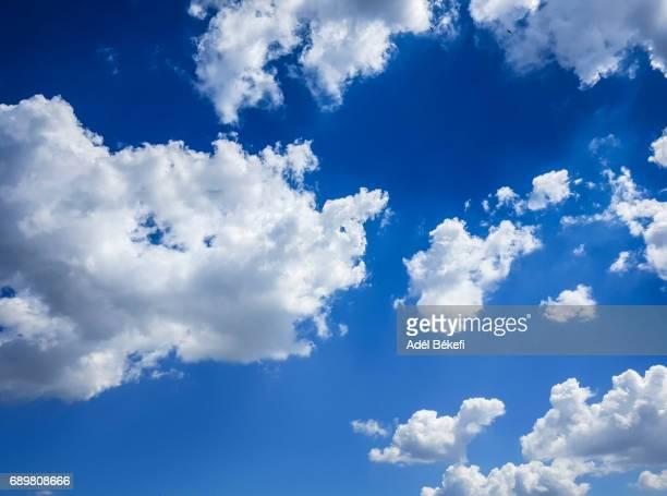 cloudy sky - bedeckter himmel stock-fotos und bilder