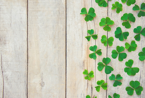 Clover leaf. Happy St. Patrick's Day. Selective focus. 1096987164