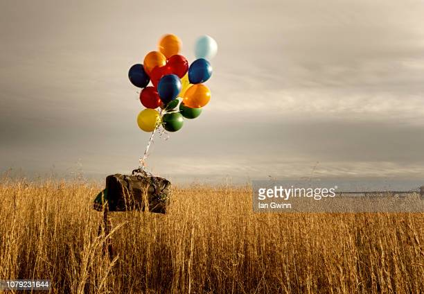clown suitcas with balloons - ian gwinn - fotografias e filmes do acervo