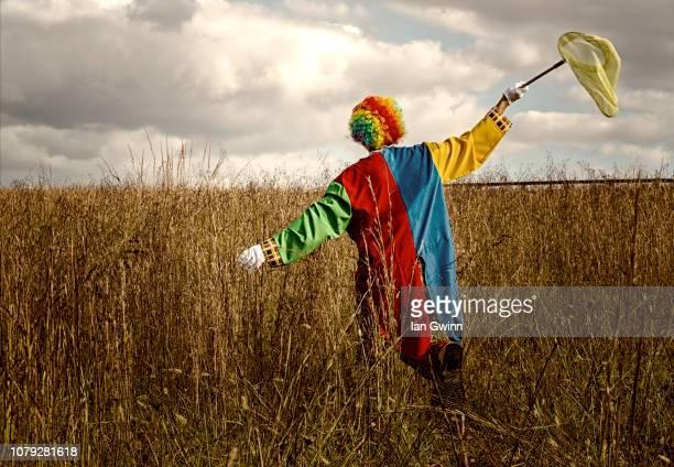 clown with butterfly net_1 - ian gwinn stock-fotos und bilder