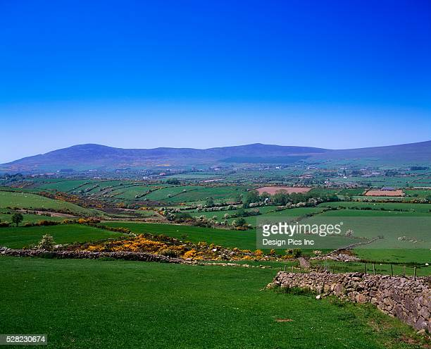 co louth, pastoral scene, cooley peninsula, ireland - peninsula stock pictures, royalty-free photos & images