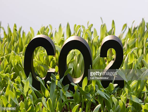 Co2 black letters overrun by grass