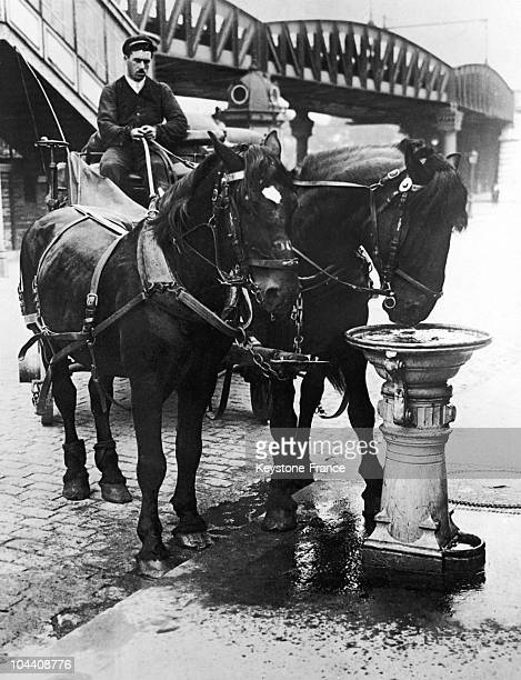 A coach driver lets his two horses drink from a fountain specially designed for them during the heat wave in Paris in the 1930's