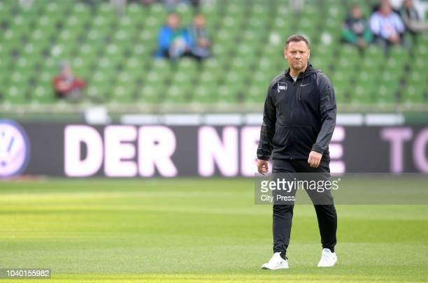coach Florian Kohfeldt of Werder Bremen after the Bundesliga match between SV Werder Bremen and Hertha BSC at Weserstadion on September 25 2018 in...