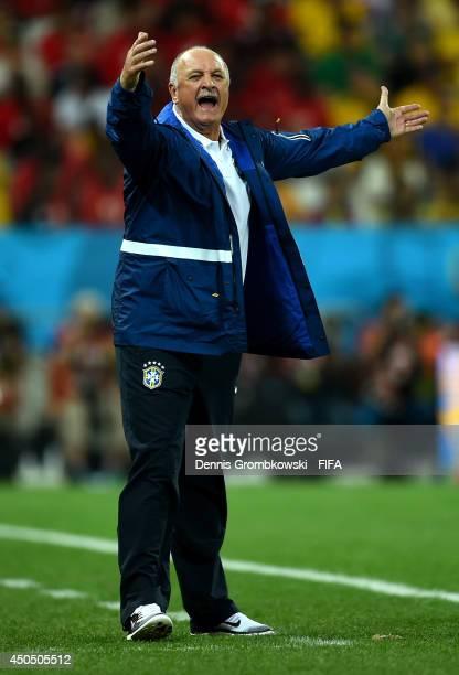 Coach Luiz Felipe Scolari of Brazil gestures during the 2014 FIFA World Cup Brazil Group A match between Brazil and Croatia at Arena de Sao Paulo on...