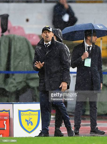 Coach of Chievo Verona Domenico Di Carlo gestures during the Serie A match between SSC Napoli and Chievo Verona at Stadio San Paolo on November 25...