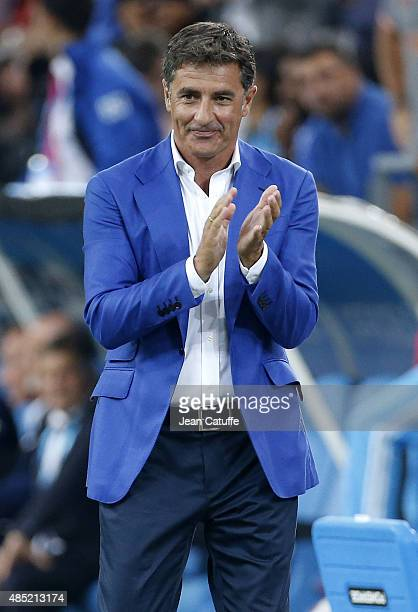Coach of OM Jose Miguel Gonzalez Martin del Campo aka Michel celebrates a goal during the French Ligue 1 match between Olympique de Marseille and...
