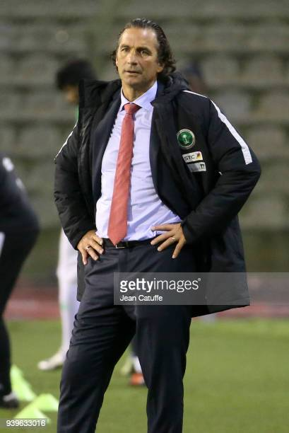 Coach of Saudi Arabia Juan Antonio Pizzi during the international friendly match between Belgium and Saudi Arabia on March 27 2018 in Brussel Belgium