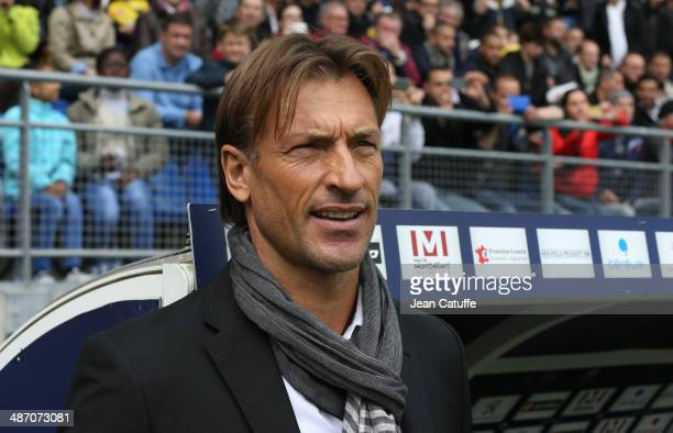 Coach of Sochaux Herve Renard looks on during the French Ligue 1 match between FC Sochaux Montbeliard and Paris SaintGermain FC at Stade Bonal on...