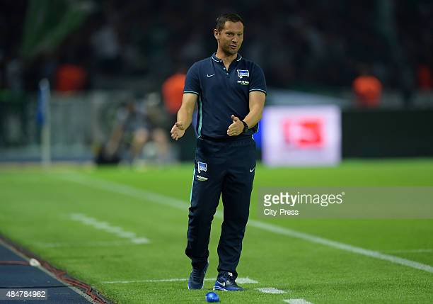 coach Pal Dardai of Hertha BSC during the game between Hertha BSC and Werder Bremen on August 21 2015 in Berlin Germany