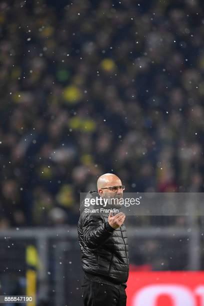 Coach Peter Bosz of Dortmund gestures during the Bundesliga match between Borussia Dortmund and SV Werder Bremen at Signal Iduna Park on December 9...