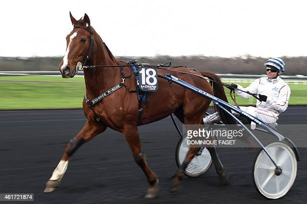 Coach rides a sulky pulled by Roxanne Griff during a training session at the Hippodrome de Vincennes in Paris on January 18, 2015. Ten-year-old mare...