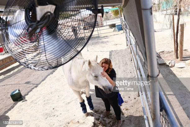 Coachella Valley Horse Rescue Director Annette Garcia comforts rescue horse Smokey, after strapping ice packs to his legs to help keep him cool, amid...