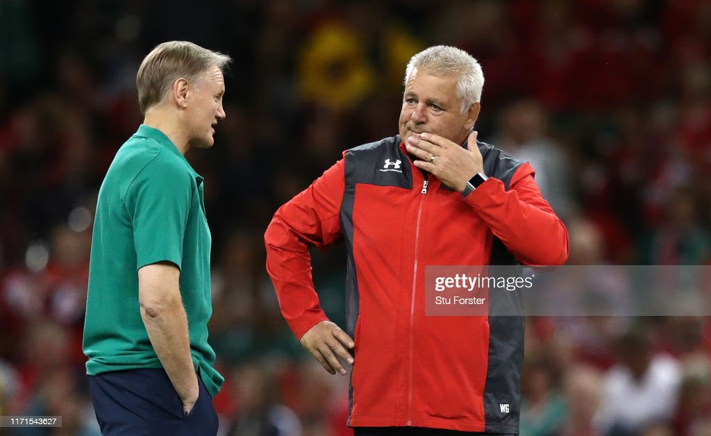 Wales v Ireland - International Match : News Photo