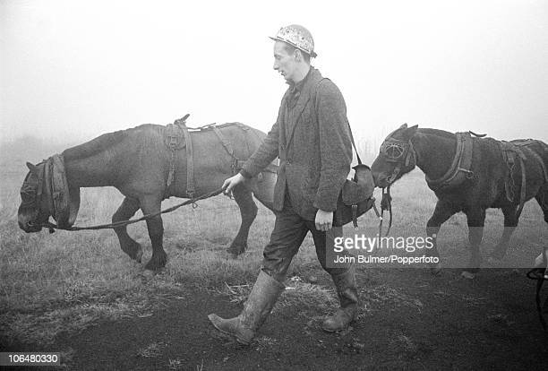 A coal miner leading pit ponies through the fog near Waldridge Colliery in County Durham circa 1963