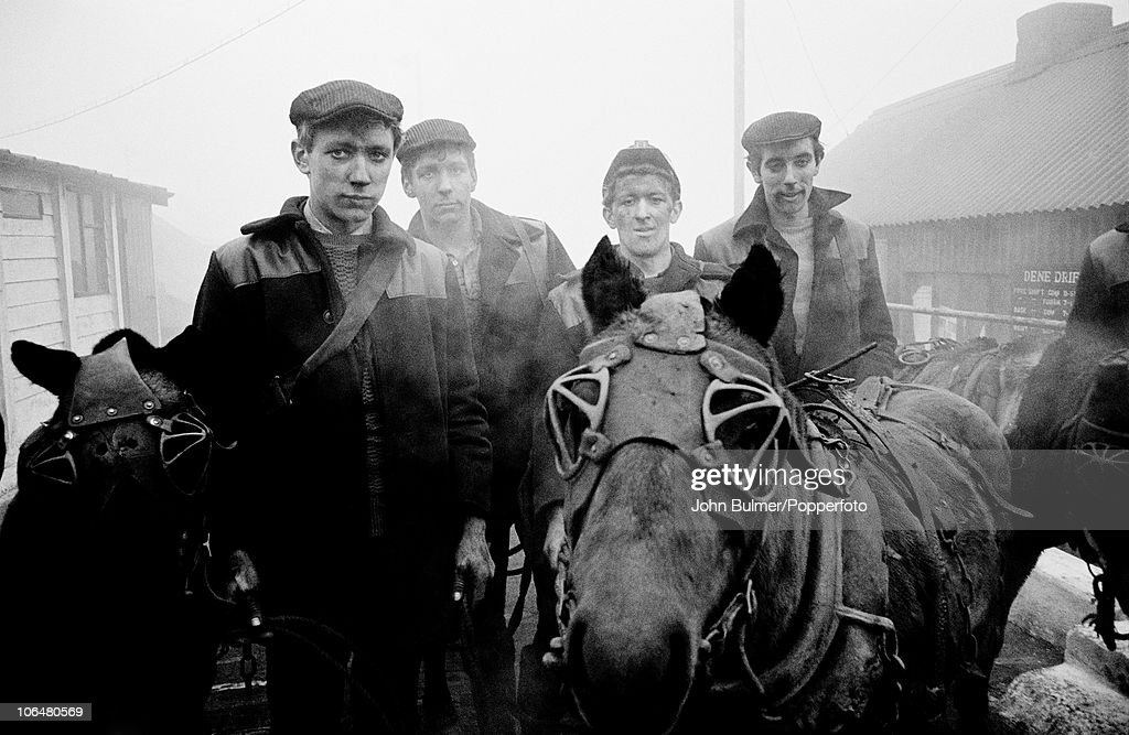 Miners With Pit Ponies : News Photo