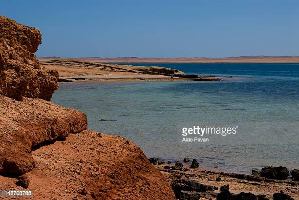 coast along the red sea (gulf of aqaba). - red sea stock pictures, royalty-free photos & images