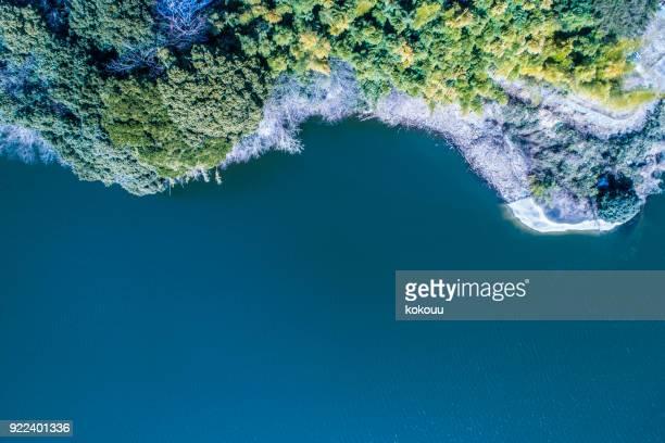 coast and forest. - inquadratura da un aereo foto e immagini stock