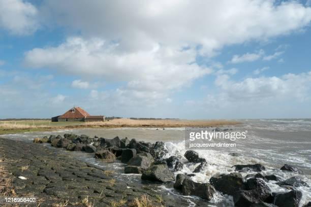kust in nederland, versterkt met basaltblokken. in de verte een karakteristieke, historische boerderij - noord holland stockfoto's en -beelden