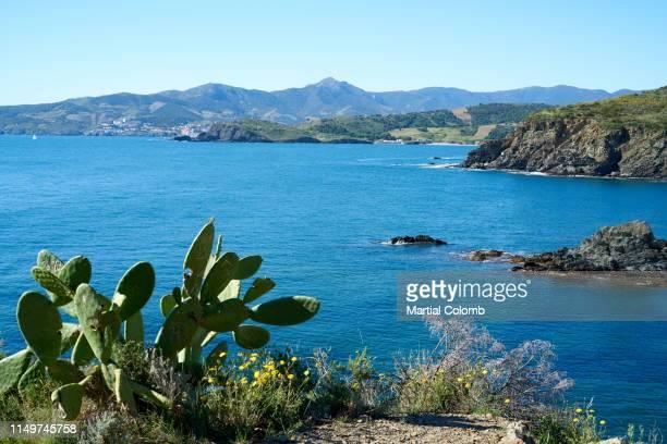 vermeille coast near banyuls/pyrenees - catalogne photos et images de collection