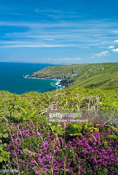coast near st. ives, cornwall, england, united kingdom, europe - st. ives cornwall stock pictures, royalty-free photos & images
