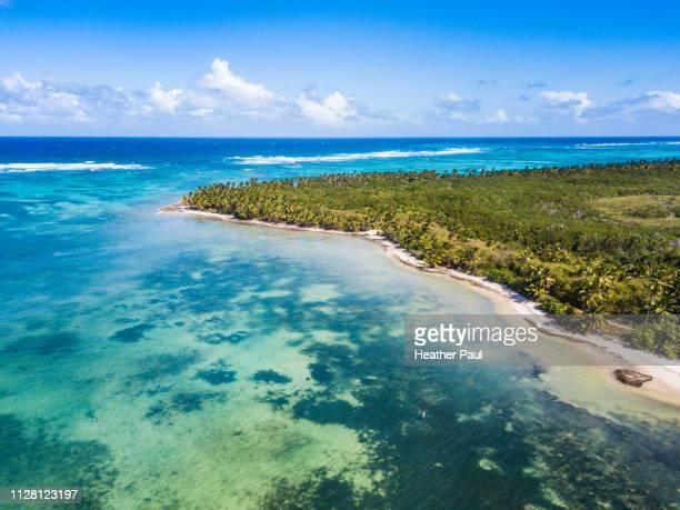 coast of cabeza de toro nature reserve in dominican republic - punta cana fotografías e imágenes de stock