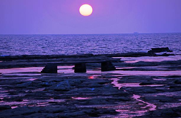 Coast of purple